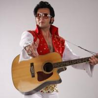 Artyści na Imprezy – Elvis żyje!