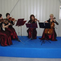 Artyści-na-Imprezy-Kwartet-smyczkowy